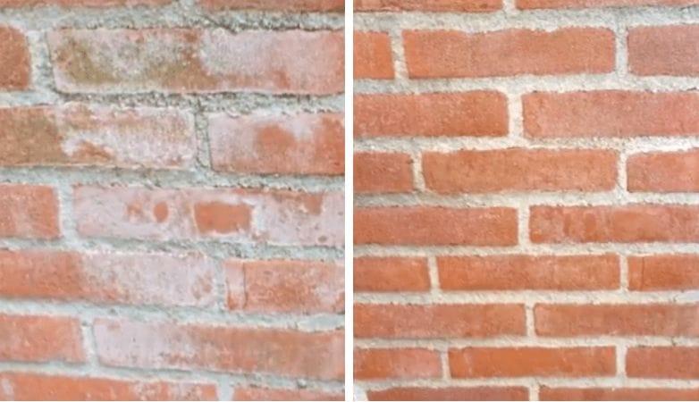 Tienes manchas blancas en las paredes de ladrillo o los azulejos del jard n con este truco - Manchas blancas en la pared ...